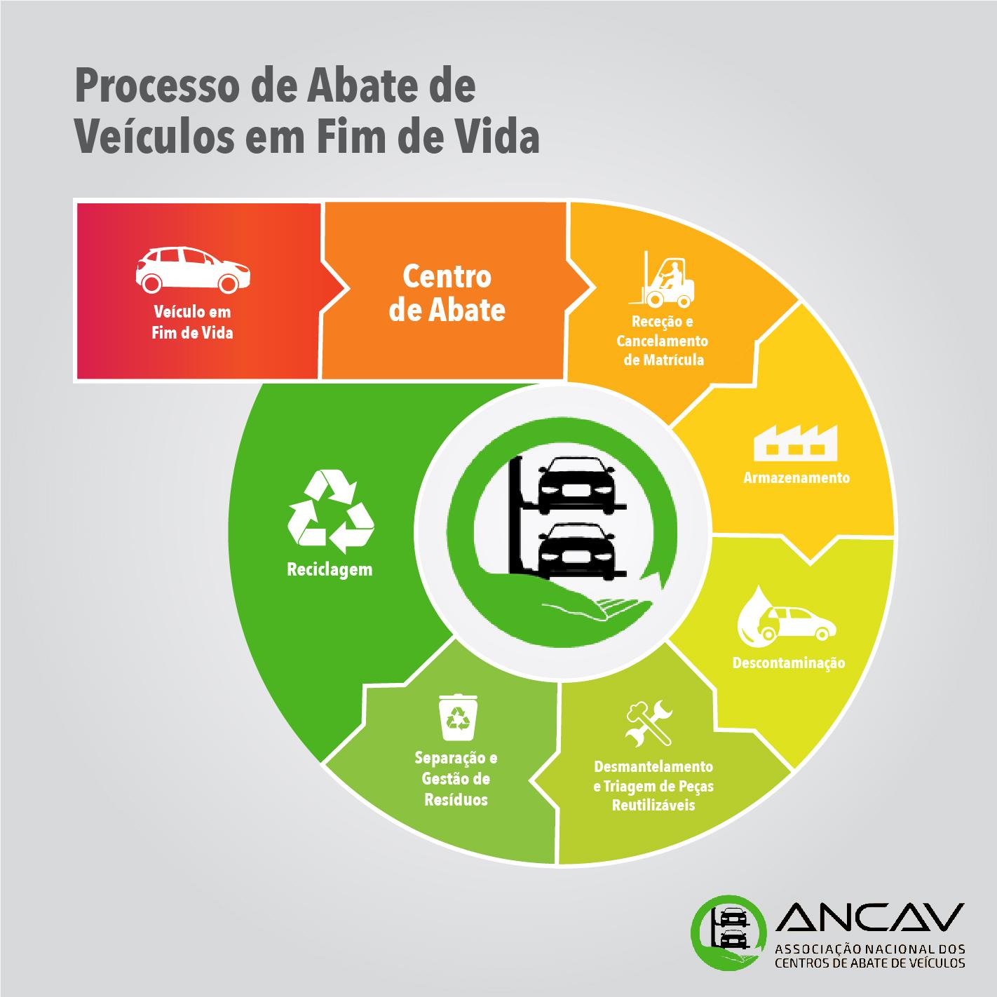 Ciclo VFV
